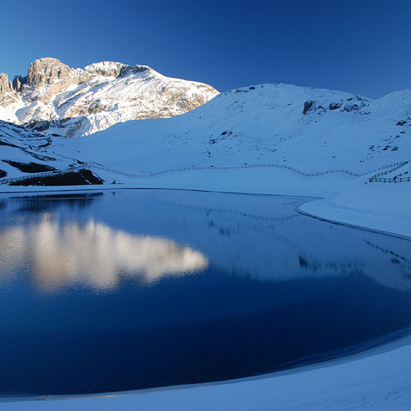 600x600 Courchevel SKI DREAMS