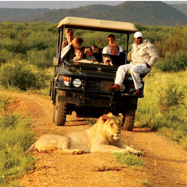 safari turları HOME 1