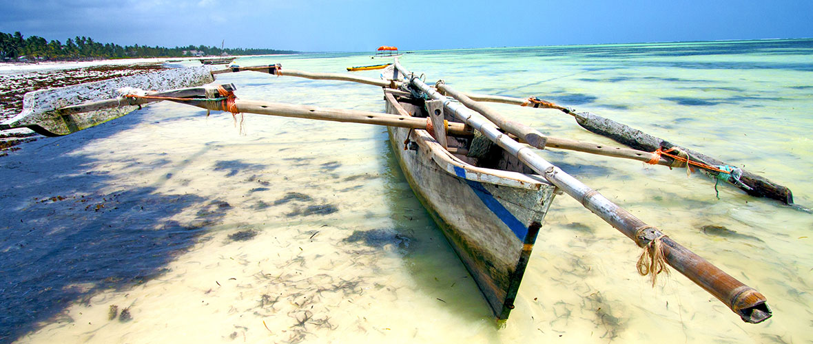 Zanzibar 01 Zanzibar Turu   Afrikanın Baharat Cenneti